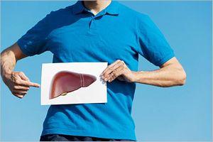 肝臓への影響