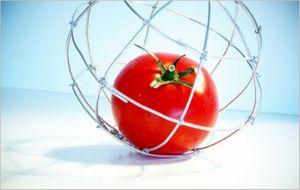 トマト 下痢