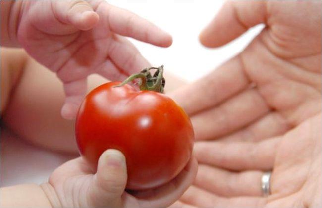 トマト 離乳食