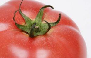トマトのヘタ